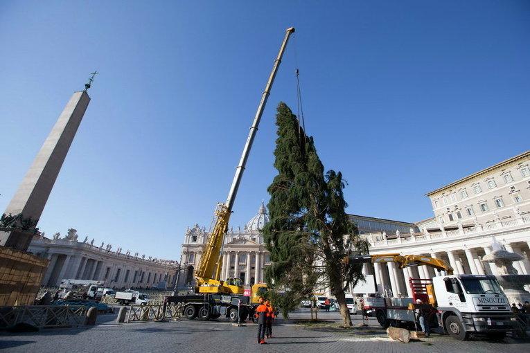 Прибывшую из Баварии 25-метровую елку устанавливают на площади в Ватикане