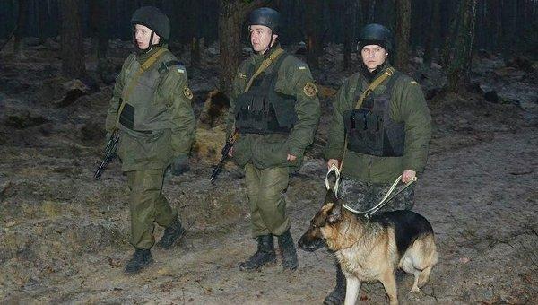 Национальная гвардия охраняет лес от добытчиков янтаря