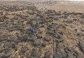 Тушение торфяников в Черниговской области