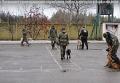 На Луганщине служебных собак одели в бронежилеты