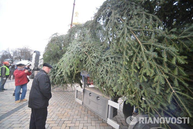 Главная новогодняя елка страны прибыла в Киев