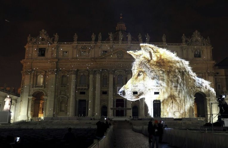 Собор Святого Петра в Ватикане осветили изображениями диких животных
