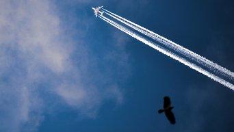 Самолет авиакомпании Emirates во время полета