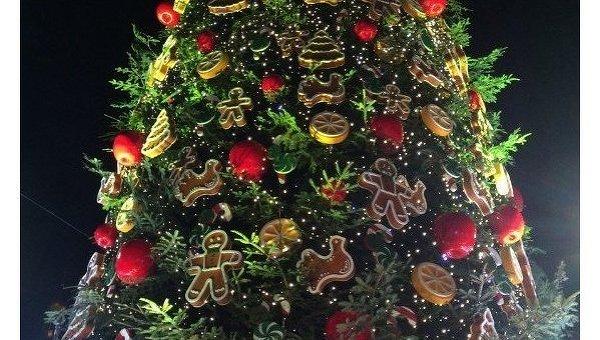 На Софиевской площади открыли главную елку страны