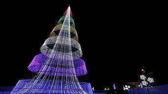 Новогодние елки со всего мира
