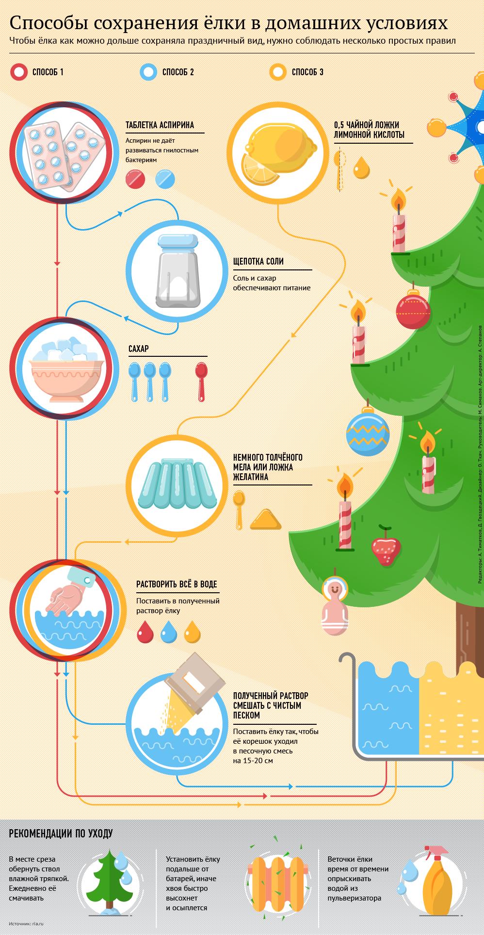 Способы сохранения новогодней елки в домашних условиях. Инфографика