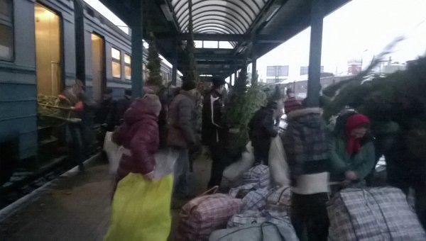 Пассажиры пригородных поездов во Львовской области массово перевозят елки