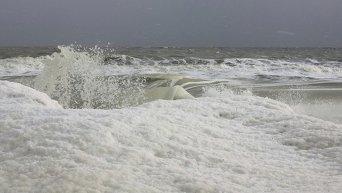 Замерзшее Азовское море. Бердянская коса