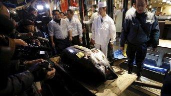 Токийский рыбный рынок Цукидзи. Новогодний аукцион тунца