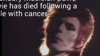 Умер британский рок-музыкант Дэвид Боуи. Видео