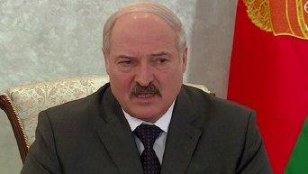 Президент Белоруссии Александр Лукашенко прокомментировал наличие в стране бойцов, воевавших в Донбассе