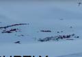 Четверо школьников погибли при сходе лавины во французских Альпах