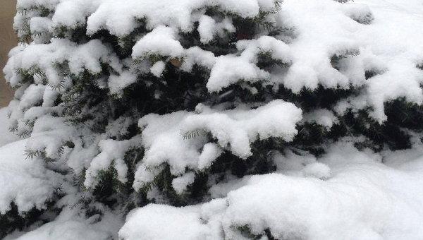 Мощный снегопад в Запорожье