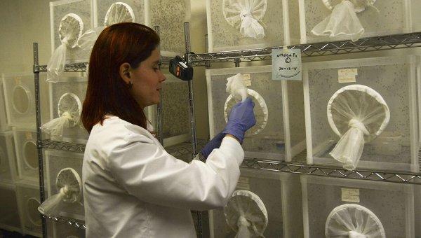 Исследовательская лаборатория. Архивное фото