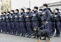 Украинские полицейские. Архивное фото
