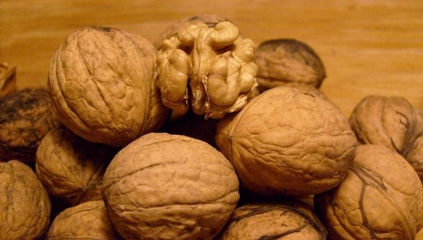Скорлупа грецкого ореха польза и вред