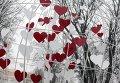 Празднование Дня Святого Валентина в Украине