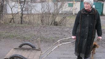 Жизнь в поселке Зайцево в пригороде Горловки
