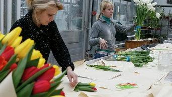 Подготовка к 8 марта в Киеве