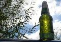 Бутылка пива. Архивное фото
