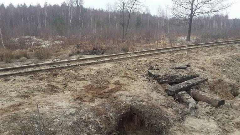 Последствия нелегальной добычи янтаря в Ровенской области