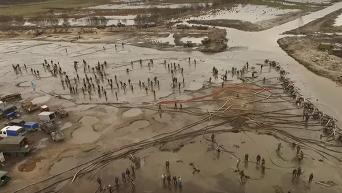 Янтарный апокалипсис в поселке Кухотская Воля