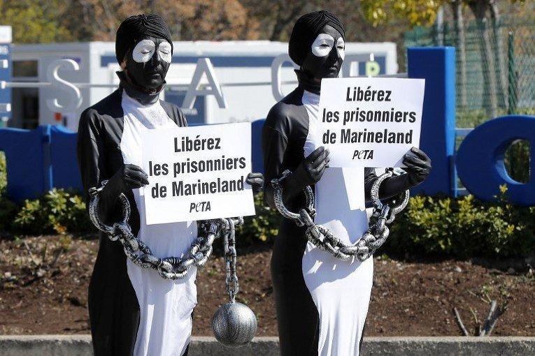 Члены организации по защите прав животных (PETA) проводят акцию протеста