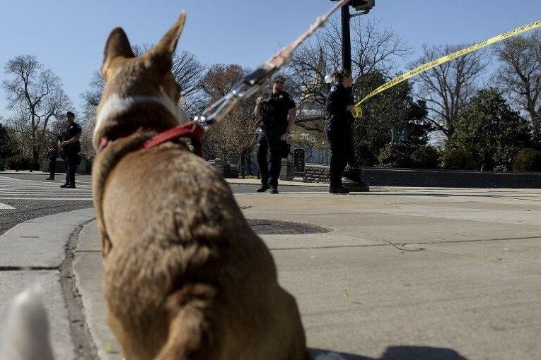 Ситуация возле Капитолия в США после инцидента со стрельбой