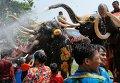 Праздник слонов в провинции Аюттхая в Таиланде