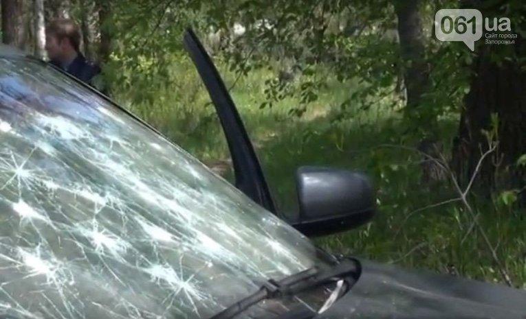 На месте убийства бизнесмена в Запорожской области