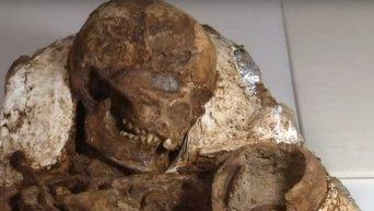 На Тайване археологи обнаружили мумии матери и ребенка возрастом 4,8 тыс лет. Видео