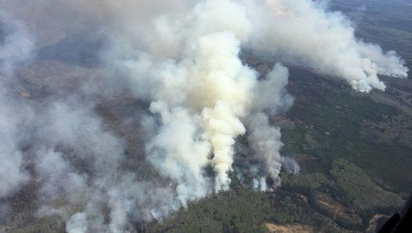 НаПолтавщине объявили чрезвычайный уровень пожароопасности