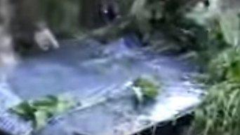 Обнаружение украденных в Вероне картин. Видео
