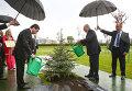 Александр Лукашенко и Гурбангулы Бердымухамедов во время церемонии посадки дерева на Аллее почетных гостей у Дворца Независимости в Минске