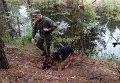 Правоохранитель с собакой. Архивное фото