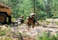 Украинские десантники в составе ЛитПолУкрбрига на учениях Анаконда