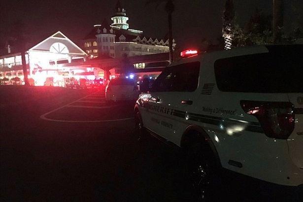 Полиция в парке у курортного отеля Walt Disney World в США, где аллигатор утащил ребенка