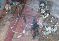 В Николаеве произошел взрыв в подъезде дома