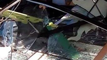Демонтаж магазина Roshen на Святошино в Киеве. Видео