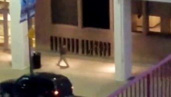 В сети появились кадры убийства полицейских в Далласе (18+). Видео