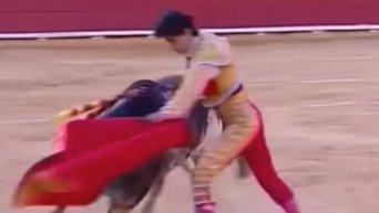 Смертельный удар быка на корриде в Испании. Видео
