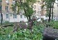 Последствия урагана в Москве. Видео