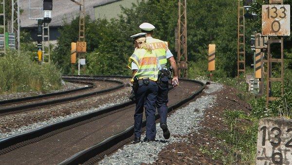 ВГермании высокоскоростной поезд столкнулся состадом диких кабанов