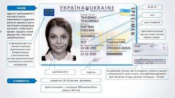 Биометрический паспорт. Инфографика