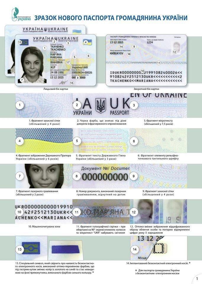Образец нового паспорта гражданина Украины. Инфографика