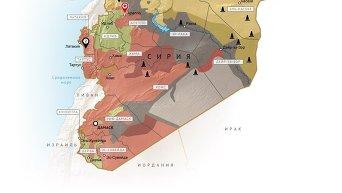 Гуманитарная операция РФ в Сирии. Инфографика