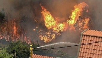Пожар в португальской Мадейре