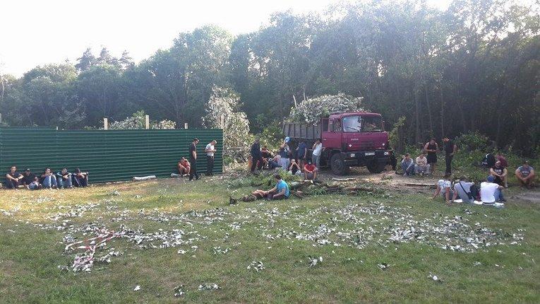 Скандальная вырубка леса в столичном Голосеевском парке