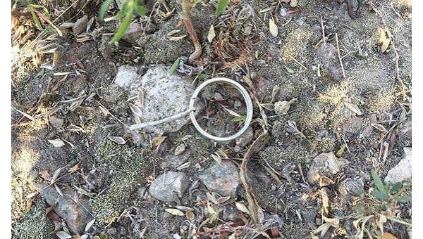 Вфирме вДнепропетровской области взорвалась растяжка, установленная наворотах