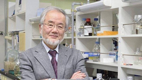 Нобелевскую премию помедицине дали засамопоедание клеток